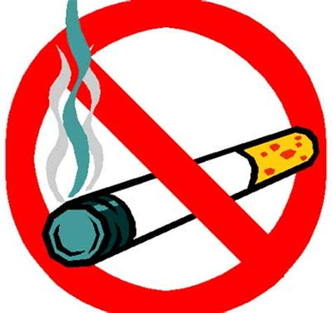 Smoking Ban in Public Places Essay Example for Free